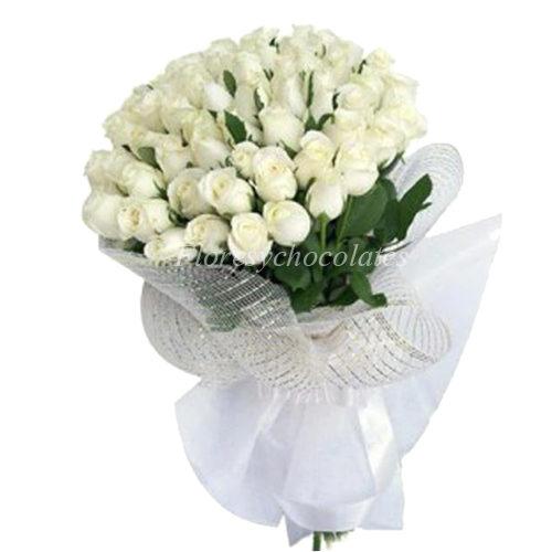 Ramo de 50 rosas blancas - Flores y Chocolates