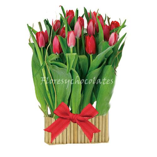 tulipanes a domicilio en santiago